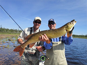 Fly Fishing for Northern Pike