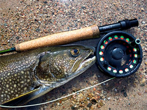Fly Fishing for Lake Trout